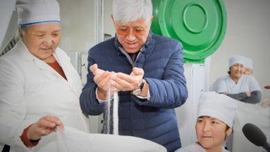 Photo of 35 тысяч тонн сахара в год будет выпускать завод в Алматинской области
